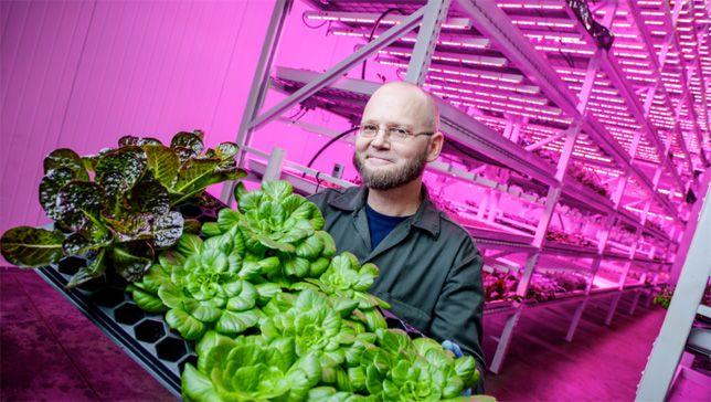 Thiết bị tiết kiệm điện ứng dụng hiệu quả trong sản xuất nông nghiệp
